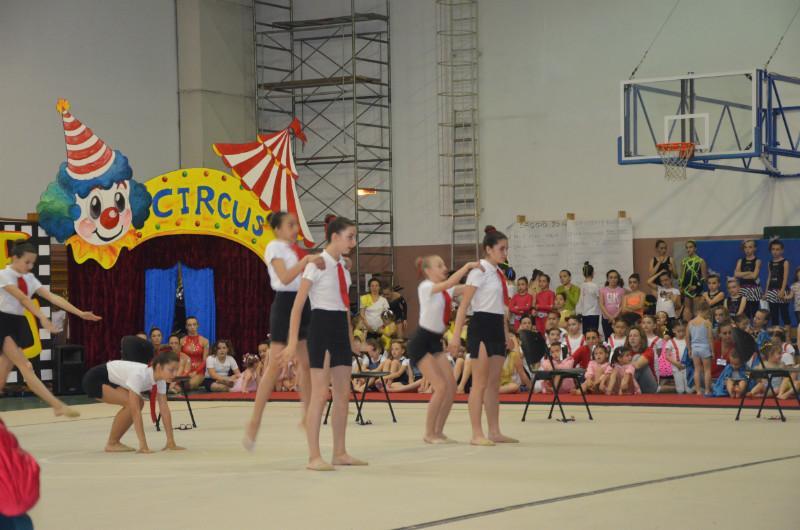 DSC0135