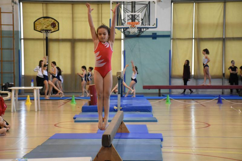ginnastica (118)