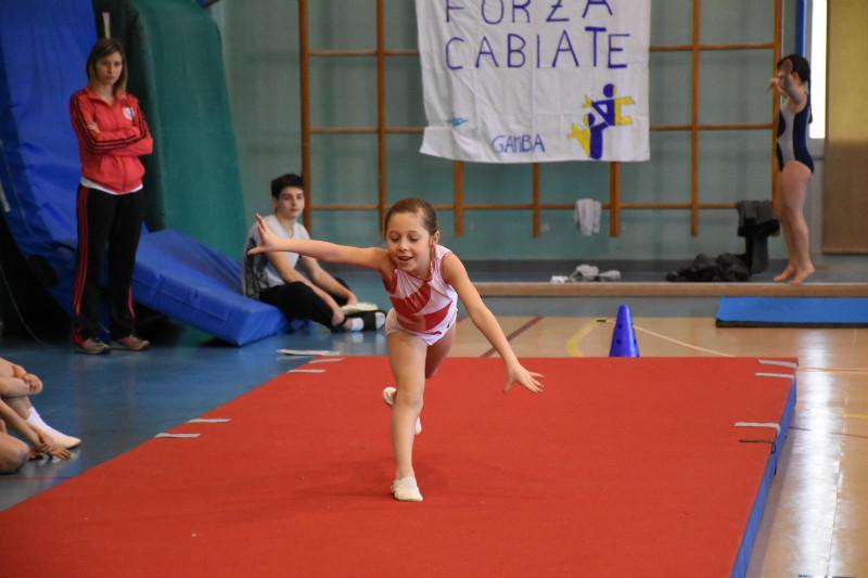 ginnastica (122)