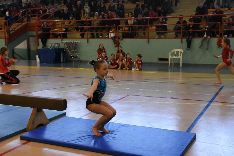 ginnastica (190)