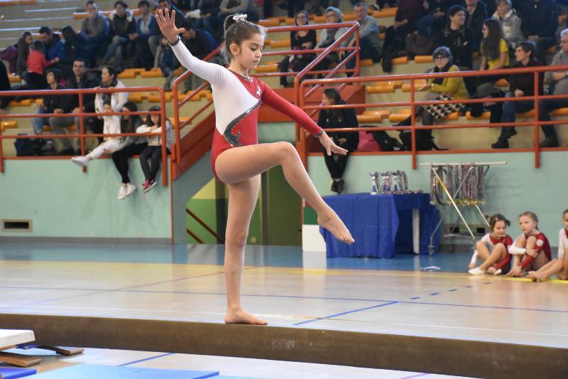 ginnastica (211)