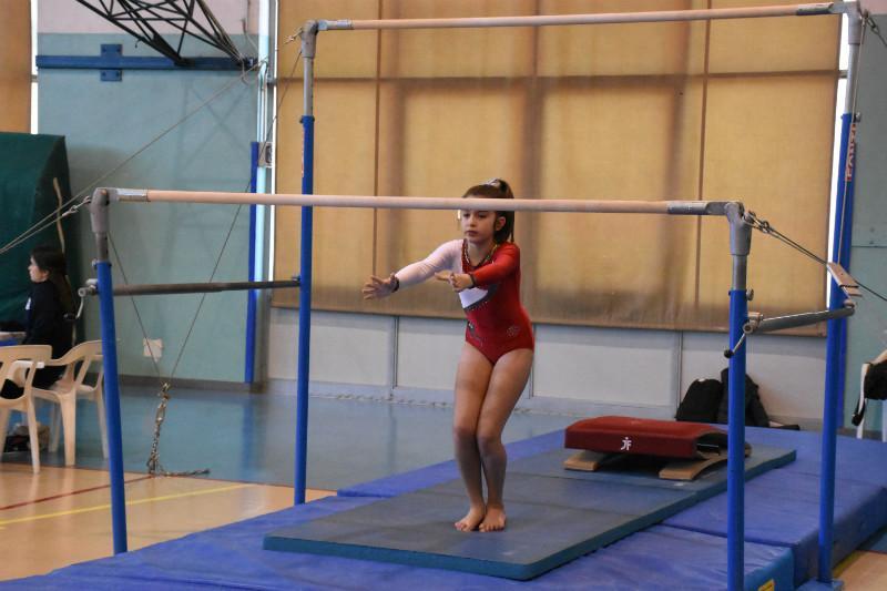 ginnastica (218)