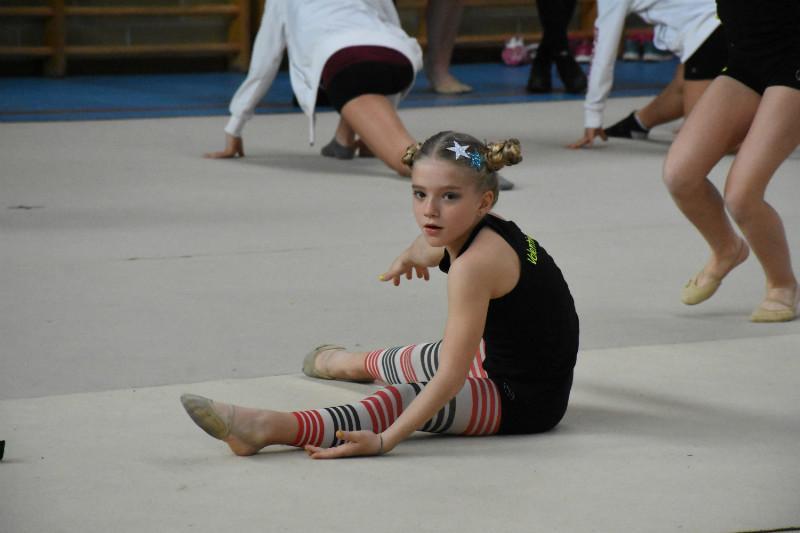 ginnastica artistica (4)