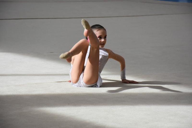 ginnastica artistica (24)