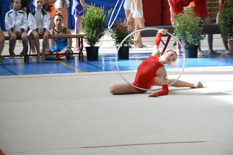 ginnastica artistica (35)