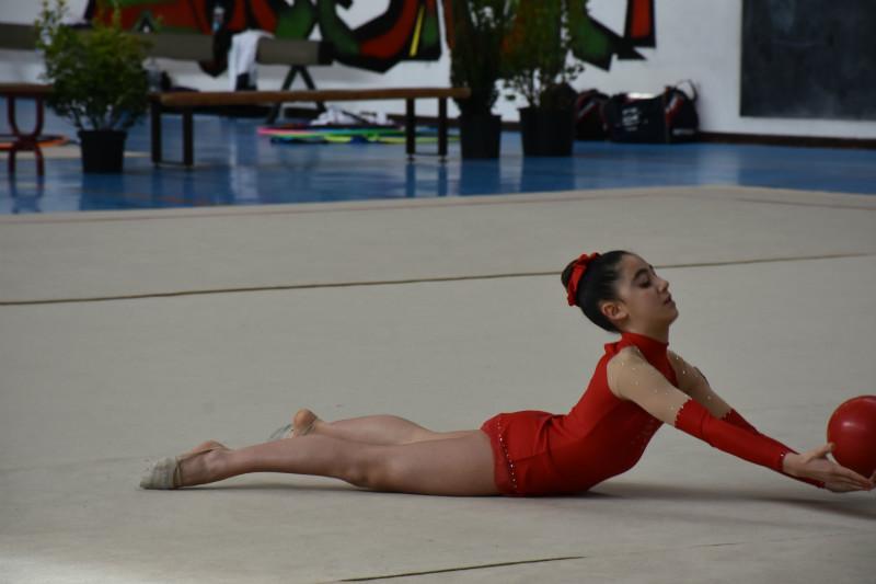 ginnastica artistica (39)
