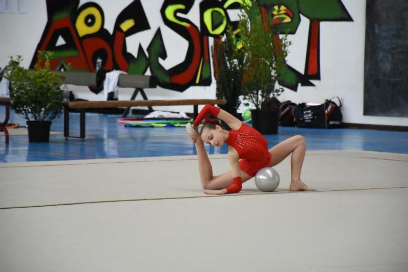 ginnastica artistica (44)