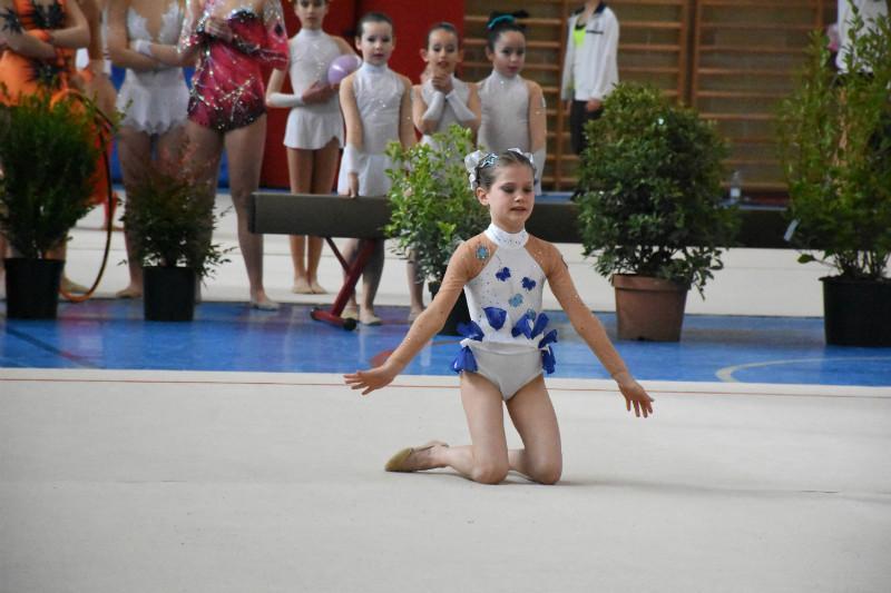 ginnastica artistica (19)