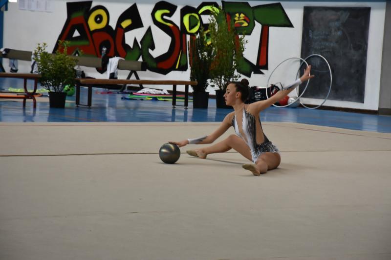 ginnastica artistica (56)