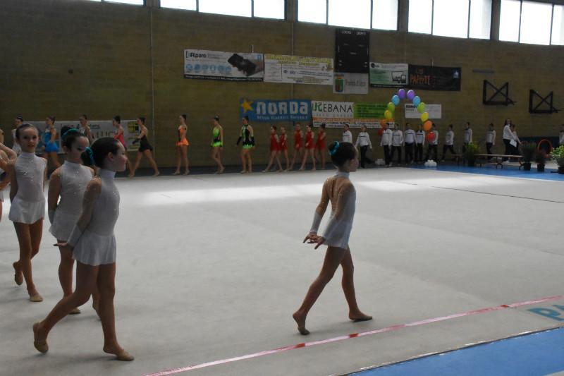 ginnastica artistica (17)