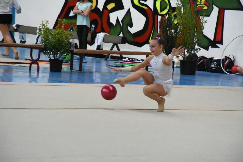 ginnastica artistica (63)
