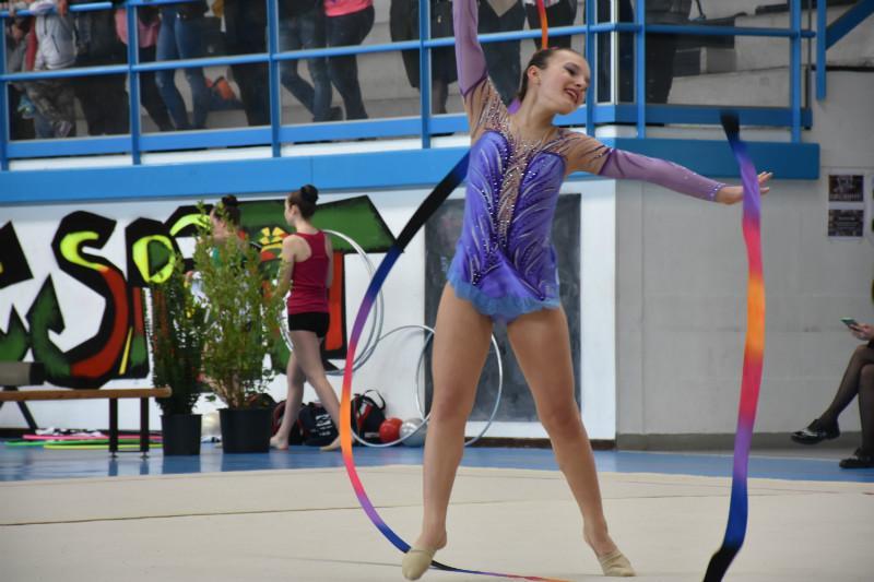 ginnastica artistica (76)