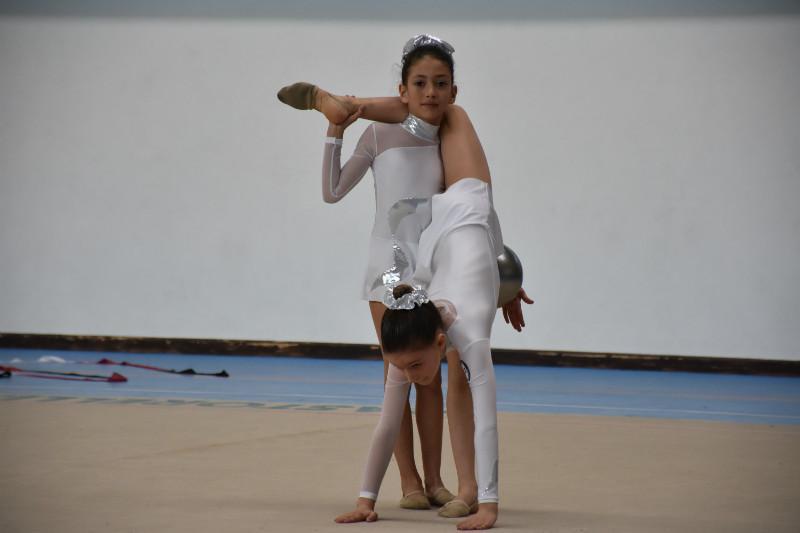 ginnastica artistica (137)