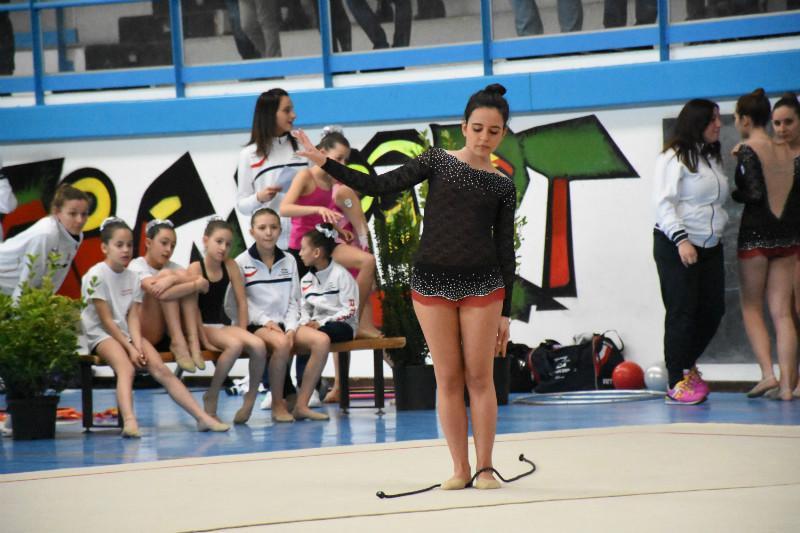 ginnastica artistica (105)