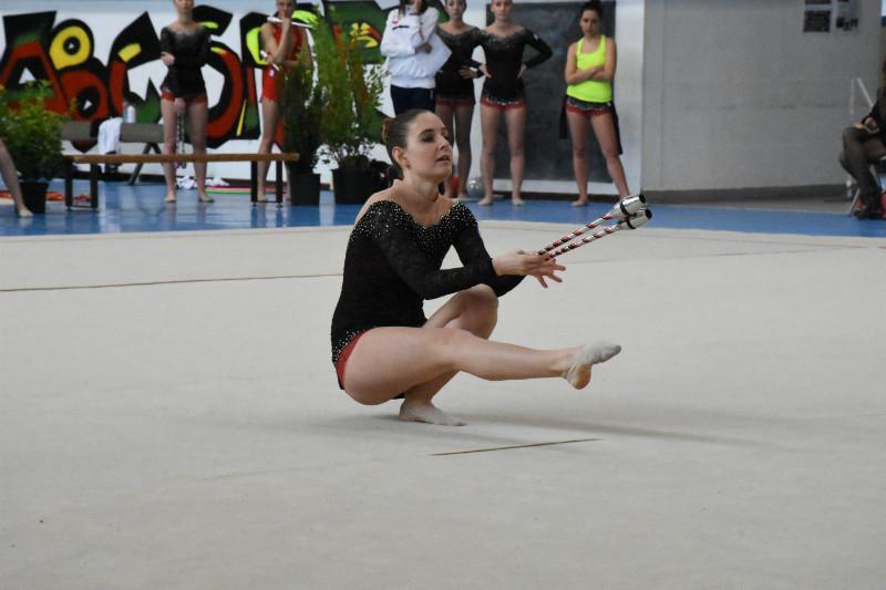 ginnastica artistica (110)