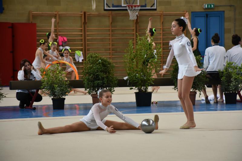 ginnastica artistica (138)
