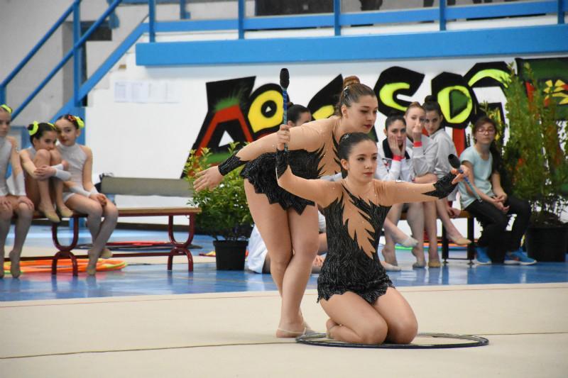 ginnastica artistica (131)