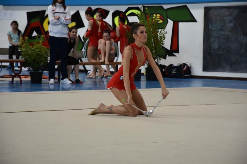 ginnastica artistica (112)