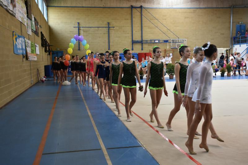 ginnastica artistica (178)