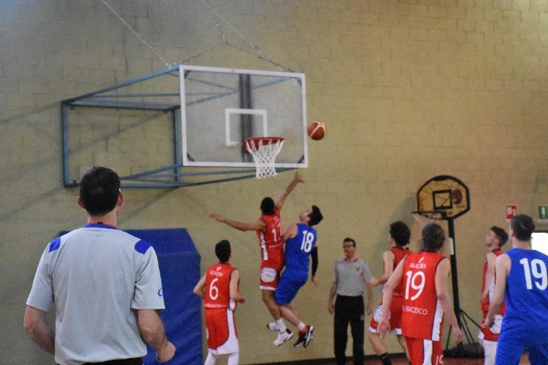 basket top junior (19)