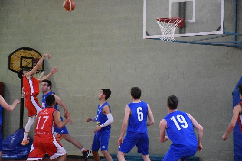basket top junior (23)
