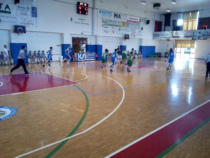 basket (13)