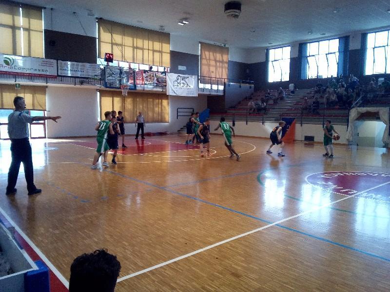 basket (16)