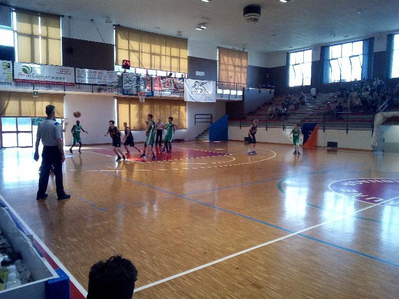 basket (17)