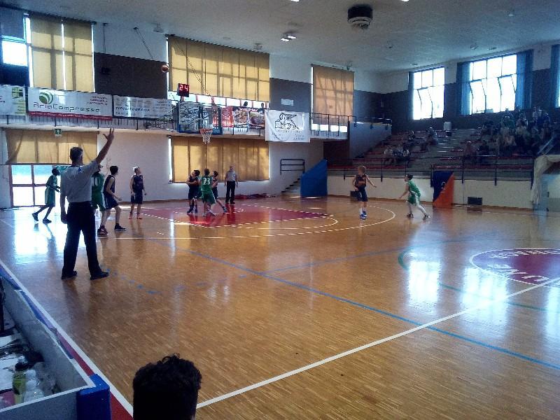 basket (18)