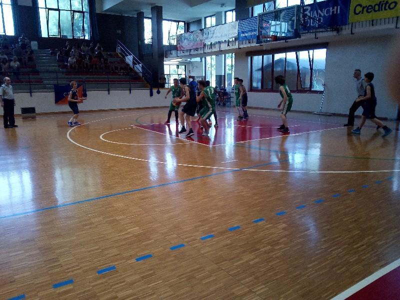 basket (19)