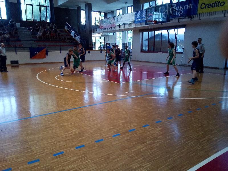 basket (20)
