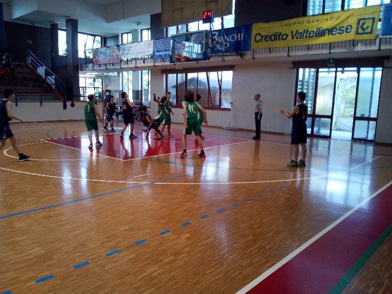basket (24)