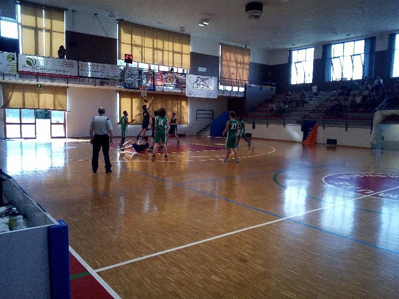 basket (27)