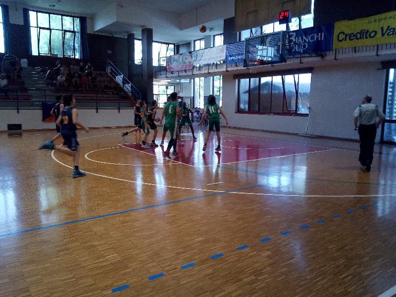 basket (28)