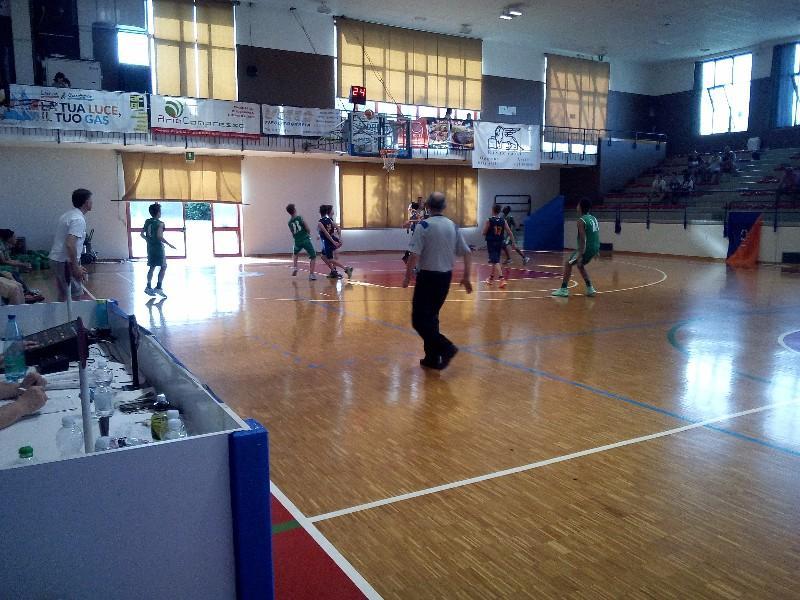 basket (31)