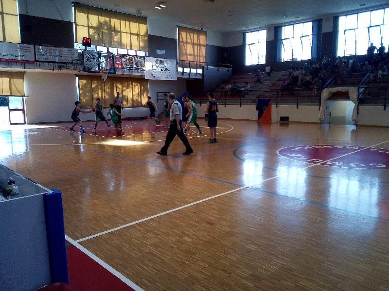 basket (33)