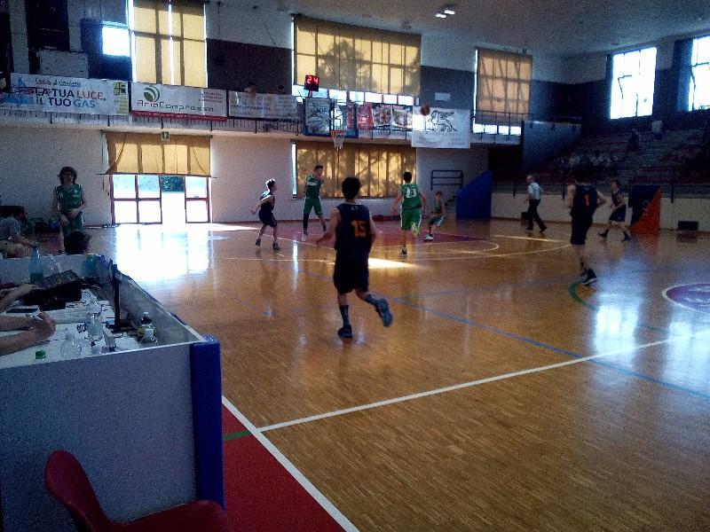basket (42)