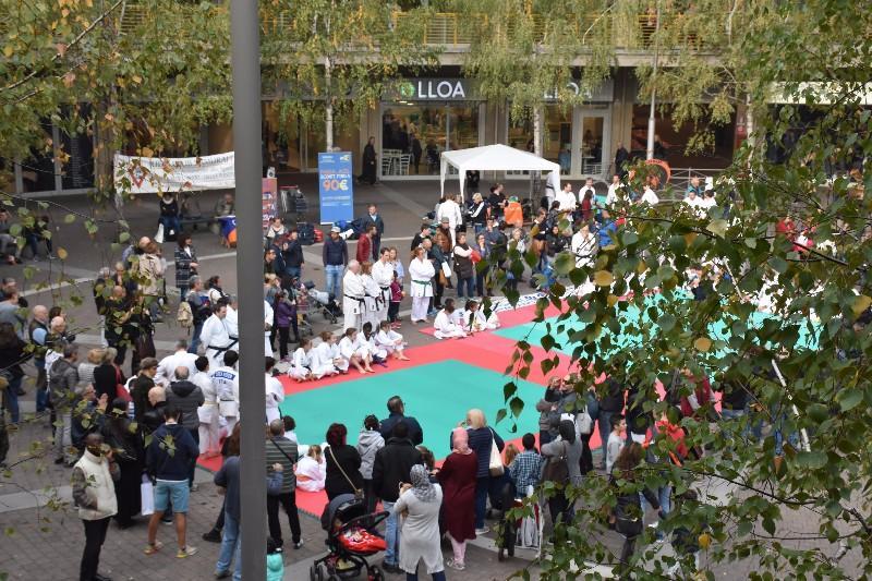 karate in piazza (33) (Copia)