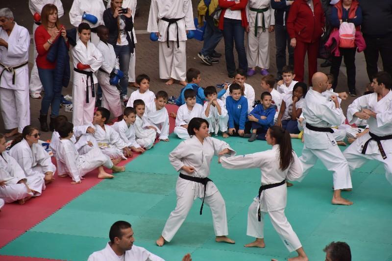 karate in piazza (59) (Copia)