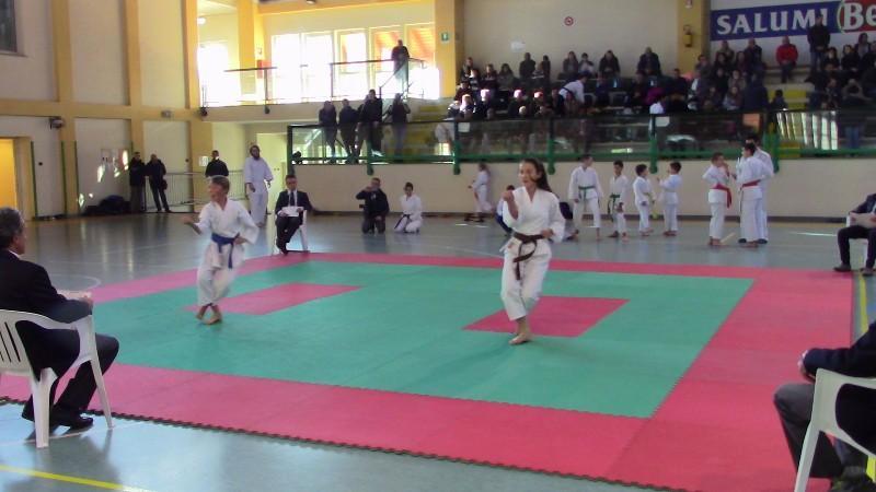 karate (11) (Copia)