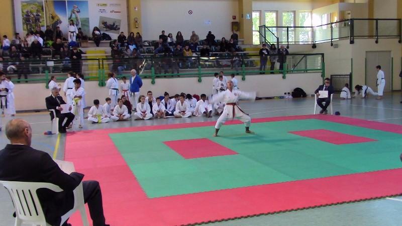 karate (20) (Copia)