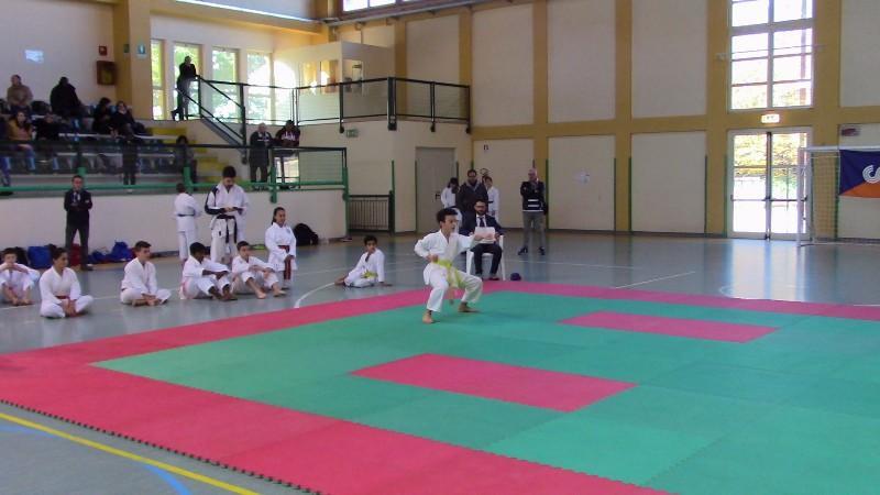 karate (21) (Copia)