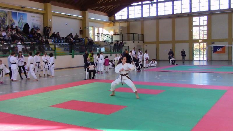 karate (26) (Copia)