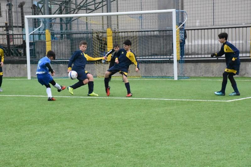 junior cup (32) (Copia)