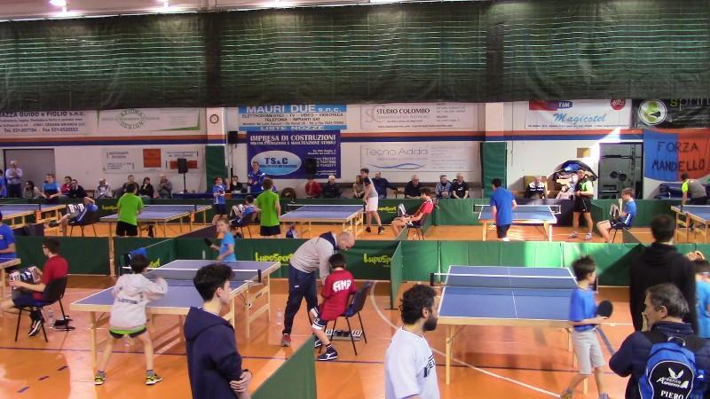 tennis tavolo (5)