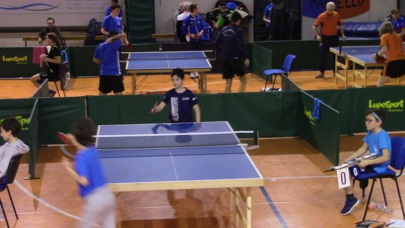 tennis tavolo (49)