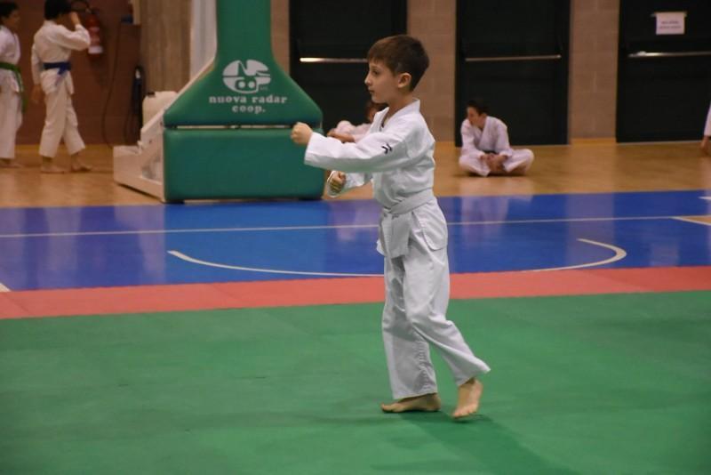 karate (49) (Copia)