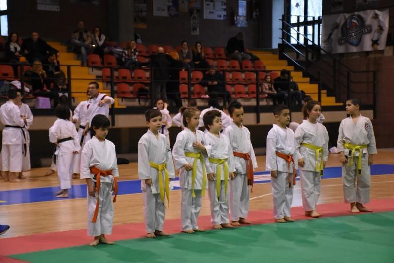 karate (50) (Copia)