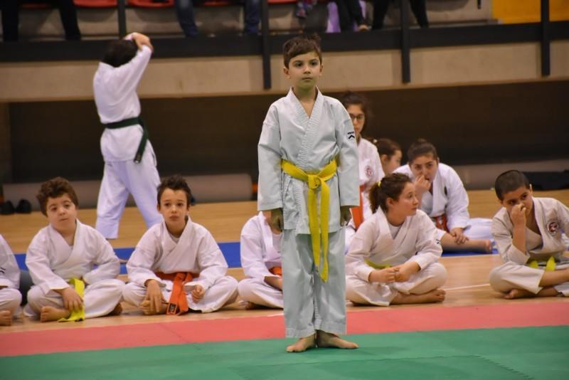 karate (55) (Copia)