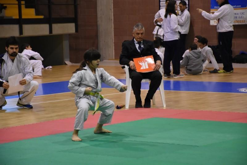 karate (68) (Copia)